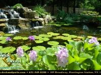 8-pondswaterfeatures (18).jpg