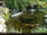 48_1 pondswaterfeatures (84).jpg