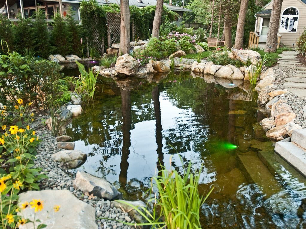 Backyard Water Features/Natural Biological Filtration: