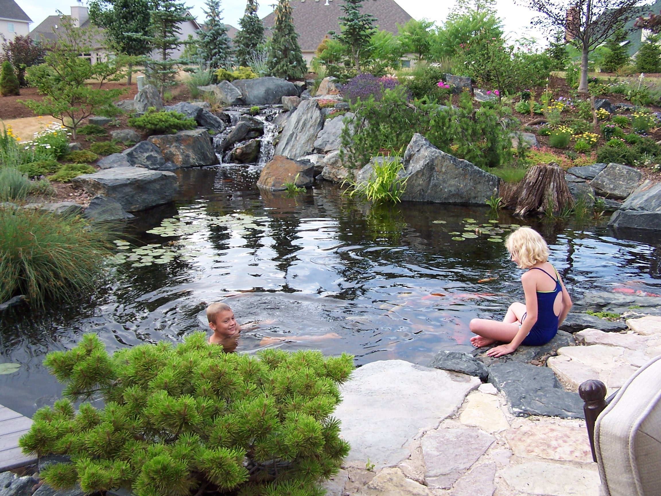 Natural swimming ponds embracing the pond life for Pond swimming pool