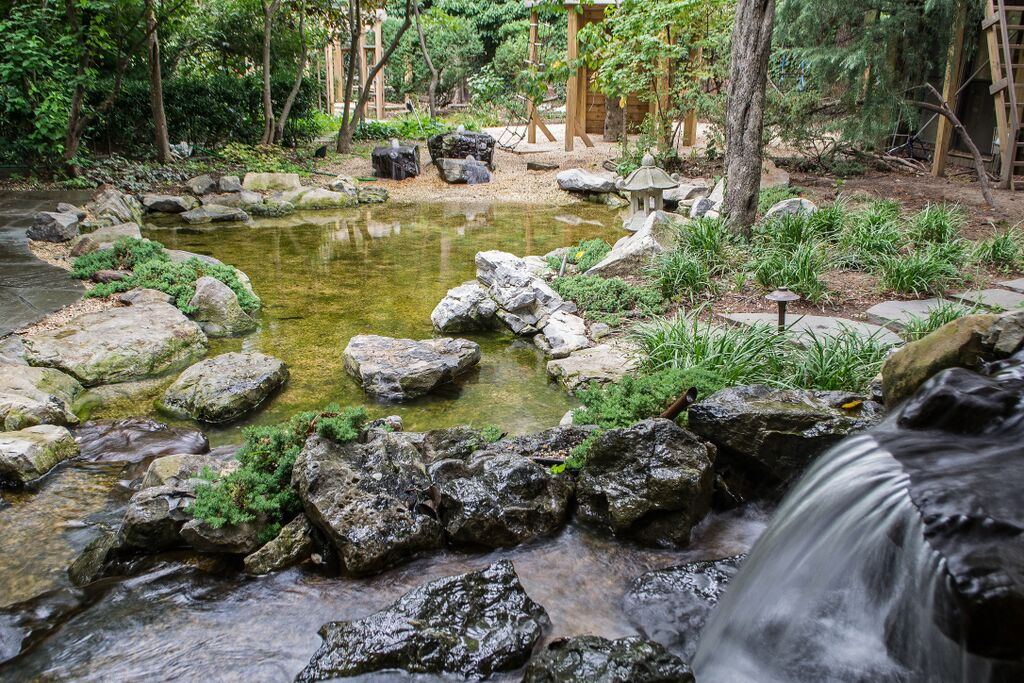 Natural playscapes pond and playground oasis in city backyard for Natural fish pond