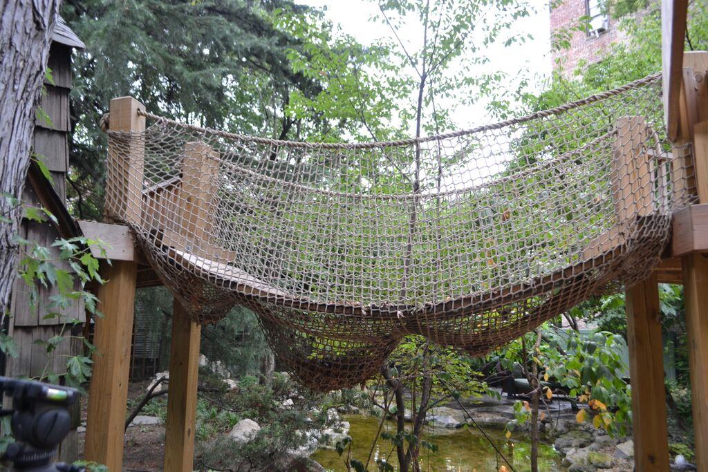 Backyard Rope Bridge:
