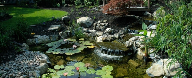 Beautiful Pondscape (Long Island/NY):