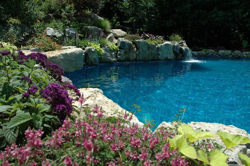 Landscaping Backyard Oasis: