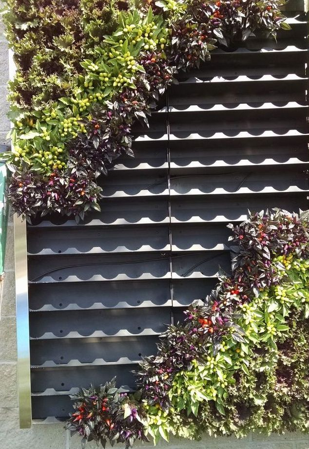 One design idea that enlivens both interior and exterior space with real flowers is the living wall. Deck and Patio's Marc Wiener recently installed on a backyard wall in busy New York City.