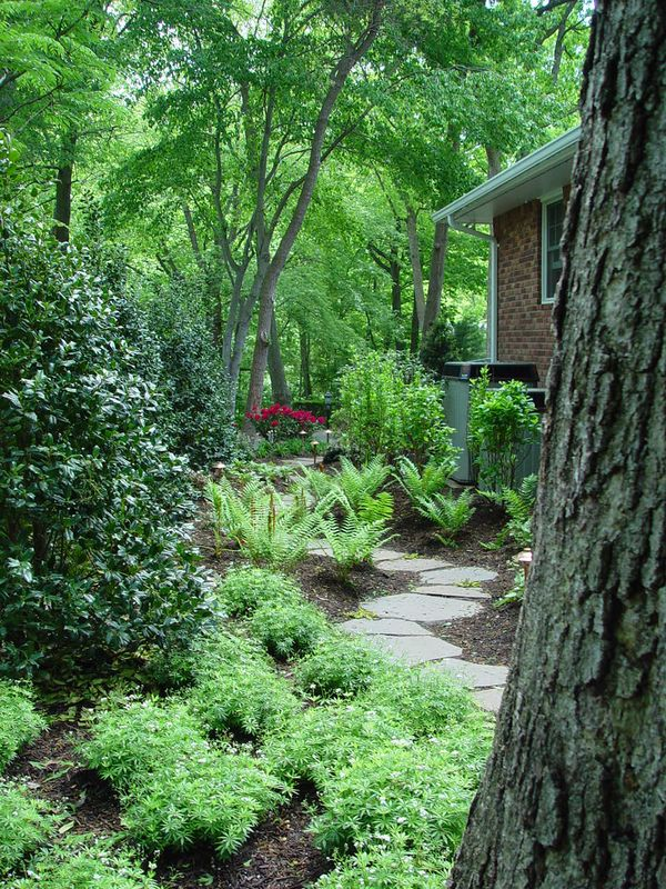 For these clients, Deck and Patio created a walk-through private woodland path for quiet moments of contemplation when strolling from one area to another.