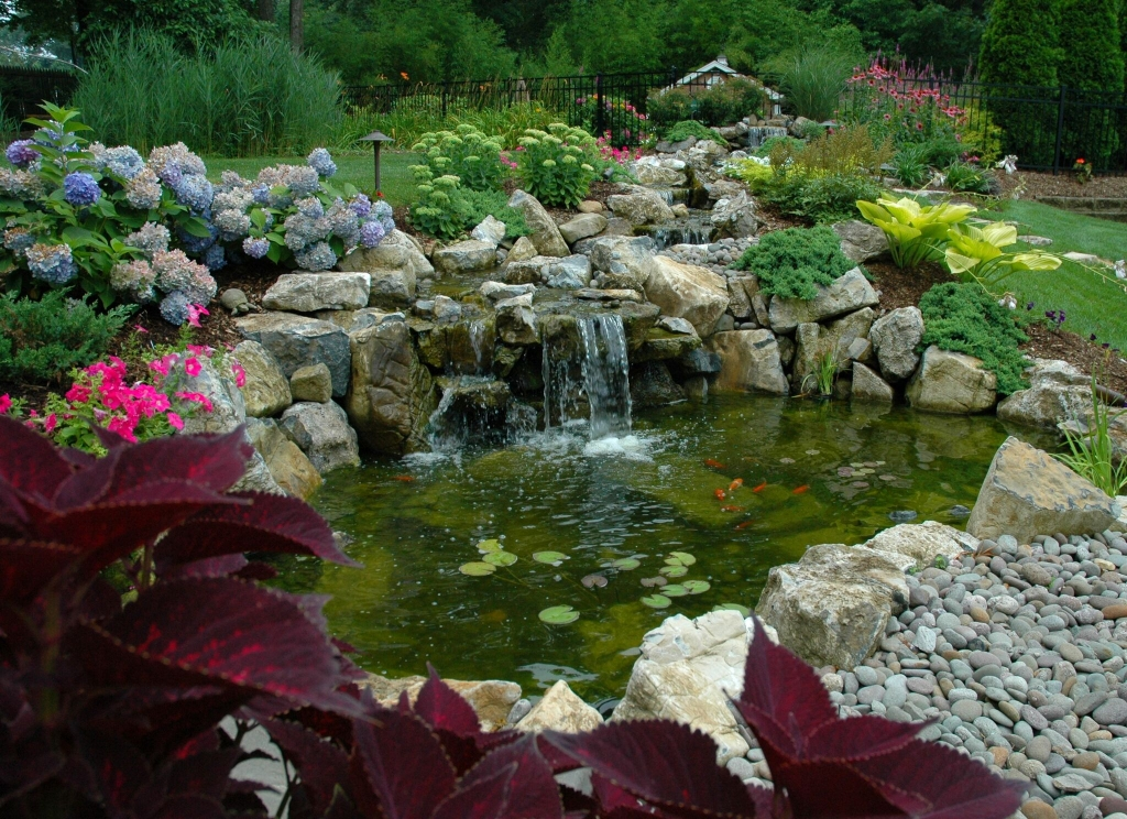 Koi ponds for Fish pond landscaping