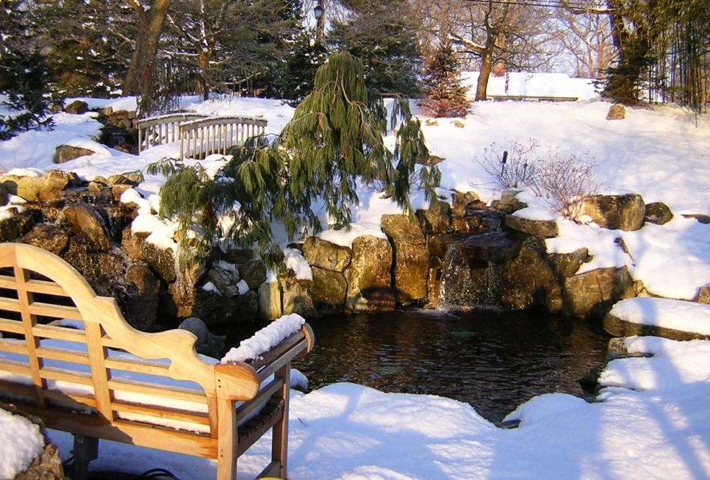 Ponds in Winter: