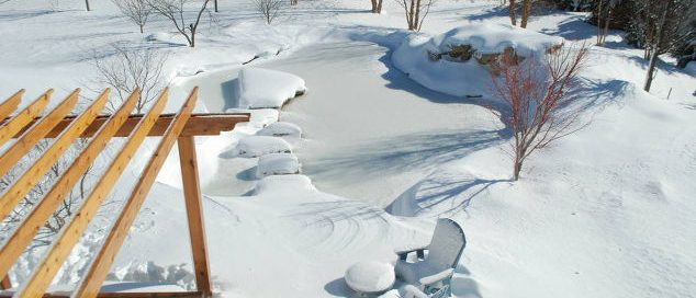 Winter Backyard Pond (Long Island/NY):