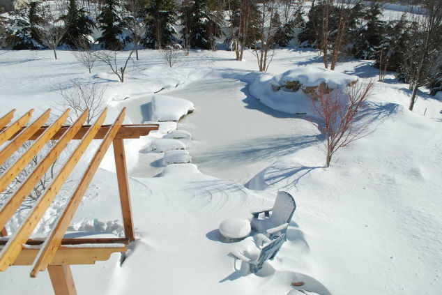 Winter Backyard Pond (Long Island/NY):
