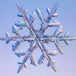 insert-snowflake