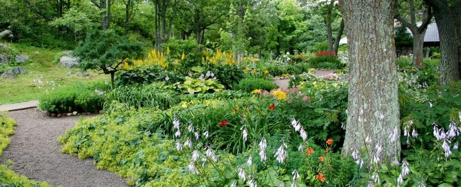 The Healing Benefits of a Garden: