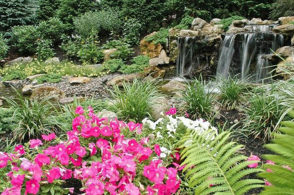 """Pondless"" Waterfall Landscaping:"