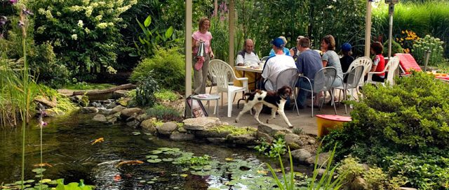 Dining Al Fresco By a Pond: