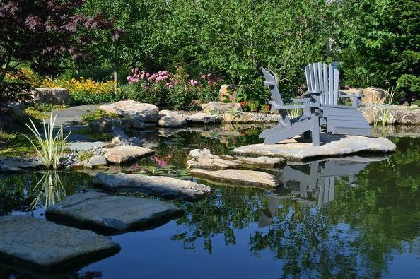 "Picnicking ""In"" a Backyard Pond:"