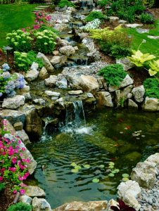 Free-form Pond