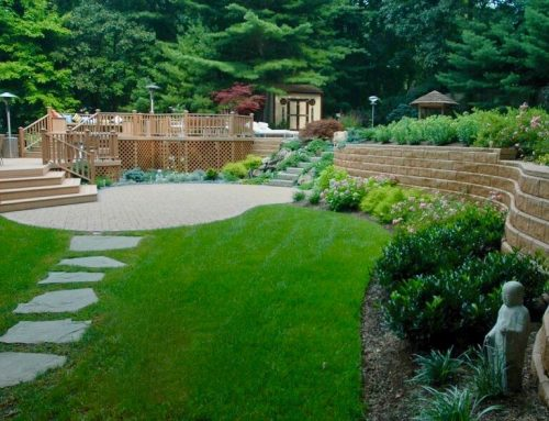 Contemporary Landscape Design: Front, Back, and In-Between