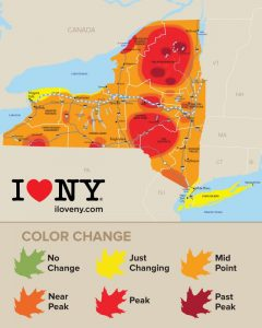I Love NY's Fall Foliage Chart