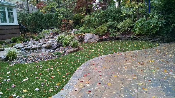 Keeping Lawns Healthy in Fall: