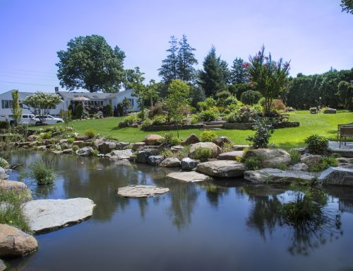 Stepping Stones Turn Footpaths into Contemplation Spaces