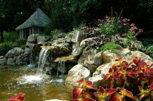 (Pond designed/built by Deck and Patio)