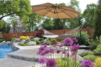 Deck and Patio Landscaping:Purple Allium Sphaerocephalon