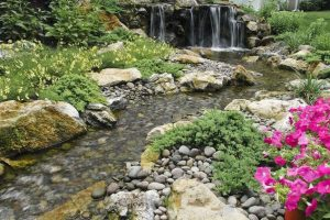 Eco-Friendly Water Features