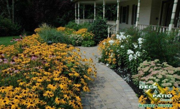 As newlyweds get used to all the various responsibilities of owning a home, it helps if at least the initial front walkway plants are tough as well as beautiful. The black-eyed Susan (coneflower) is a very hardy favorite of Deck and Patio clients and was certainly used to great curb appeal here.