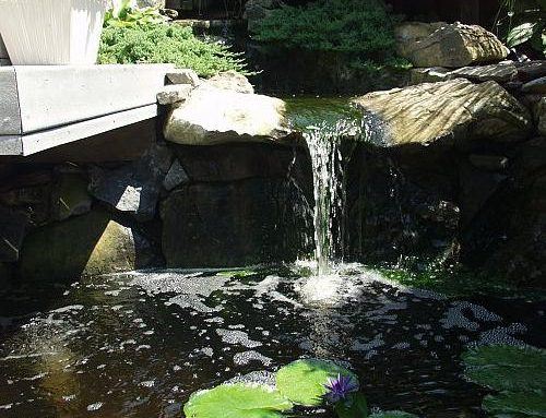 Testing the Water with a Small Water Feature
