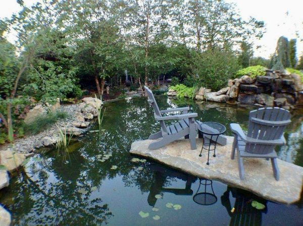 Private Island in Backyard Pond: