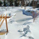 Backyard Pond in Winter.