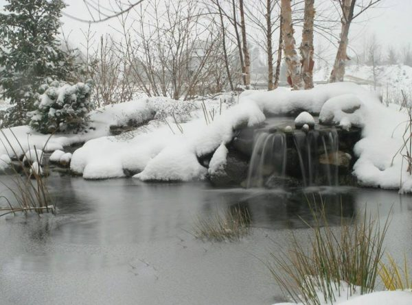 Winterizing Waterscapes: