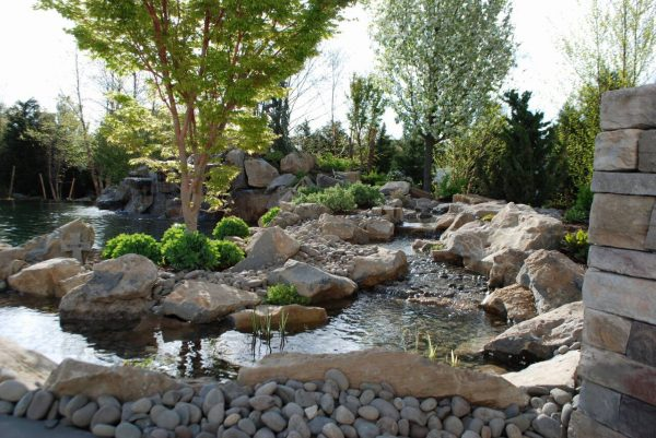 Water Feature with Stream and Landscaping: