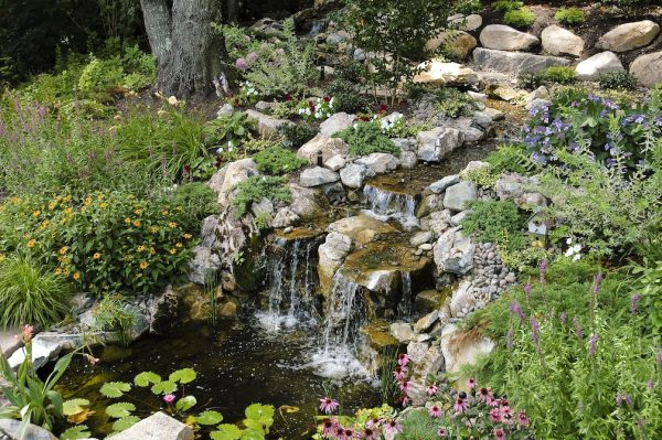 Beautiful Plantings Adorn Water Feature