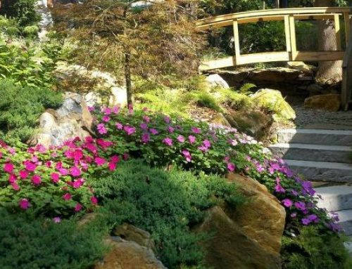 Landscape Design Is Not Just Flowers and Shrubs