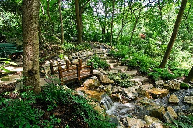 'Forest Bathing' Opportunity on Long Island, NY: