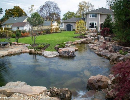 Choosing a Recreational Pond Over a Swimming Pool