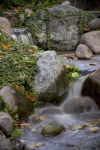 Unwanted Pond Debris: (Photo: Aquascape, Inc.)