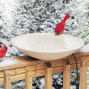 Bird Baths: