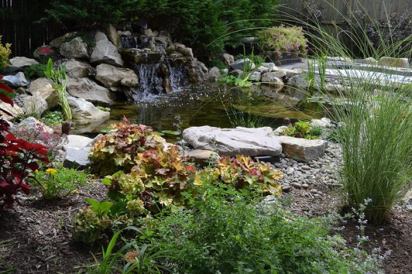 Water Features as Focal Point: This captures the view from the homeowners new patio where colorful plantings help create a beautiful setting. But notice how the eye naturally is drawn to the waterfall. In addition, the sounds of moving water adds to an experience of relaxation.