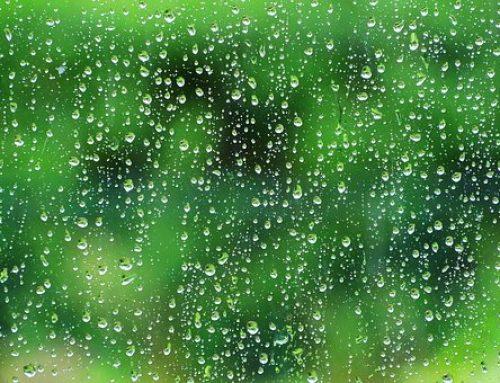 Harvesting Long Island Rainwater is a Good Thing