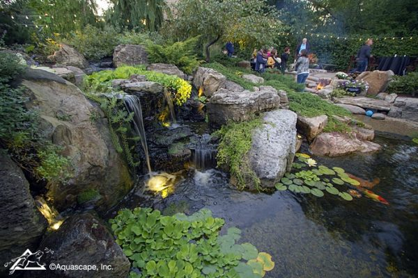 Helfrich Pond/Patio at Dusk: