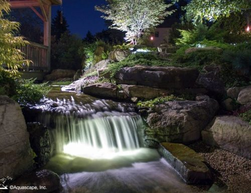 A Backyard Pond Retreat that 'Feels Magical'