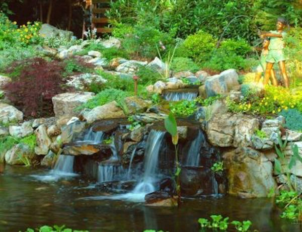 Pond Water Features: