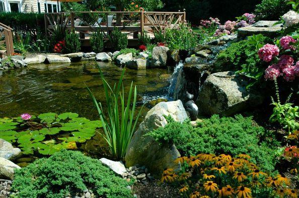 Pond-side Living: