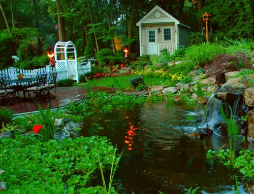 Bring Your Backyard to Life with a New Deck and Pond