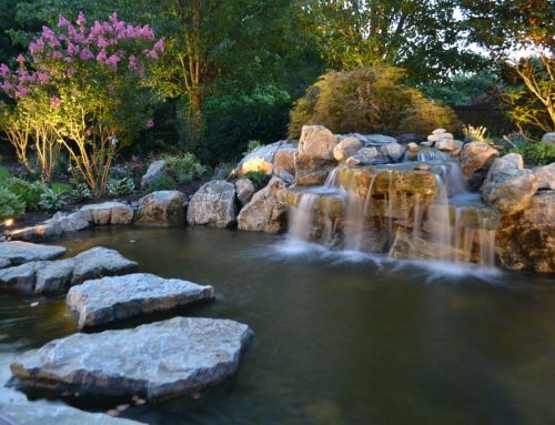 Landscaping Awards: Sweeping the Entire Water Features' Category