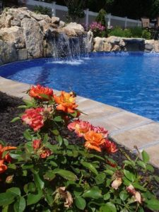 Go Bold with Your Poolscape (Long Island/NY):