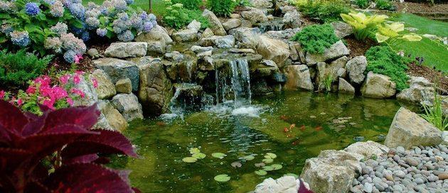 Free-form Pond and Stream: