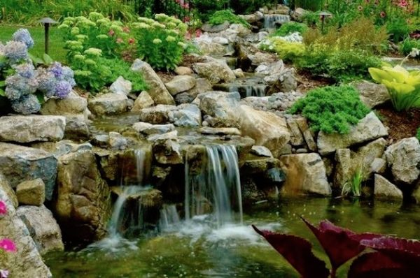 Pondscapes-Beautiful All Year Long:
